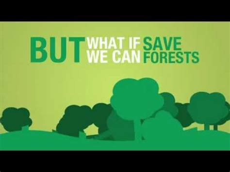 Write a essay on environment